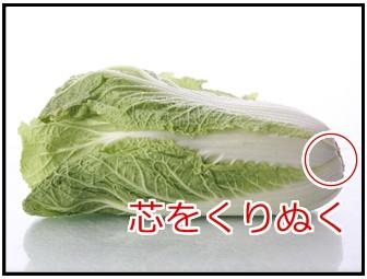 白菜の芯の画像
